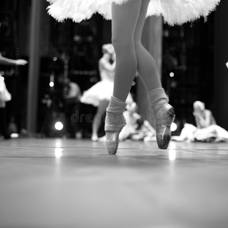 Free Elegance Of Ballet Movement Royalty Free Stock Photo - 42905855