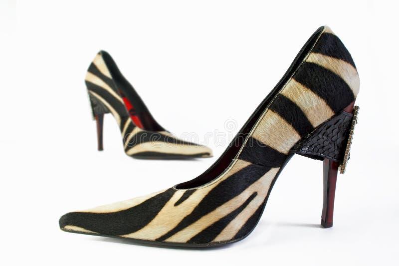 elegancja buty obraz stock