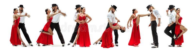 Elegancja Latynoscy tancerze w akcji, odizolowywającej na białym pracownianym tle obrazy royalty free