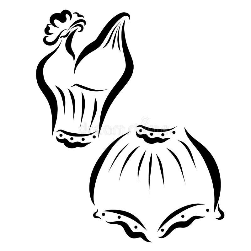 Elegancka bielizna, swimsuit lub lato, odziewamy ilustracja wektor