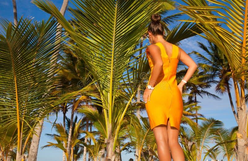 Elegancka brunetka w mody sukni na plaży. obraz royalty free