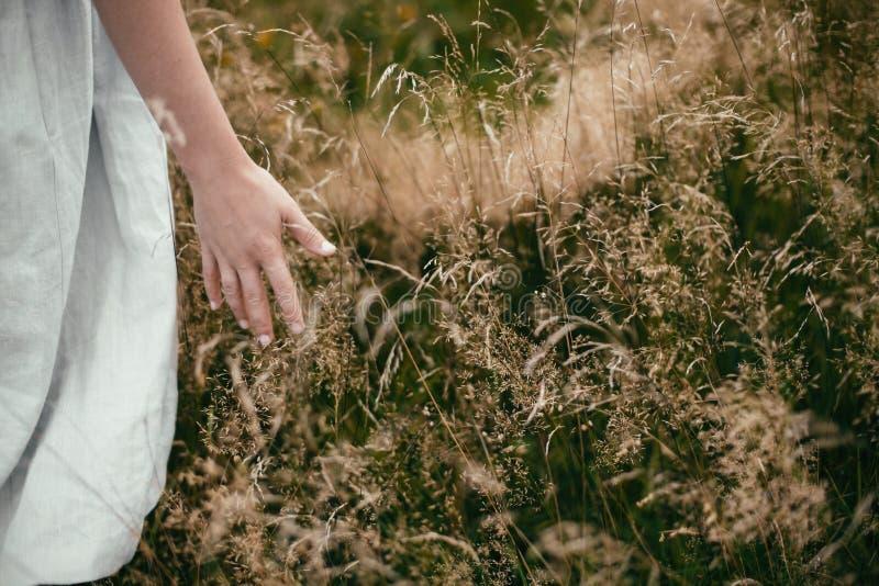 Elegancka dziewczyna w pościeli sukni zgromadzenia wildflowers w polu i ziele, ręka zamknięta w górę Boho kobiety odprowadzenie w obrazy stock