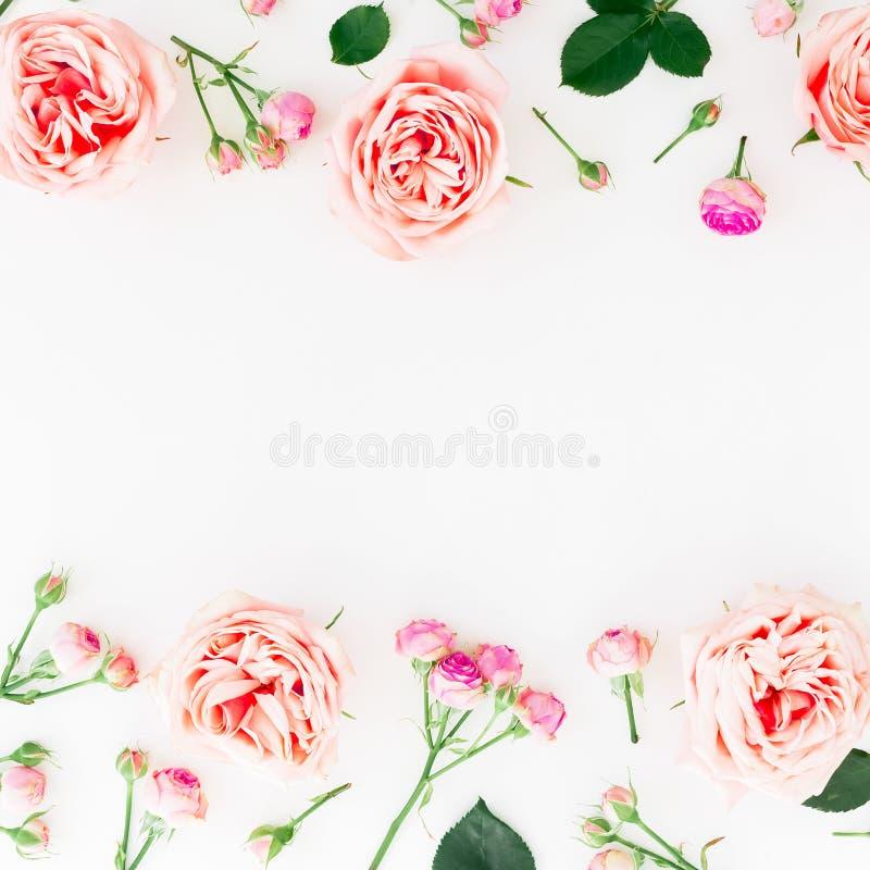 Elegancka granicy rama robić różowe róże, pączki i płatki na białym tle, motyla opadowy kwiecisty kwiatów serca wzoru kolor żółty zdjęcie stock