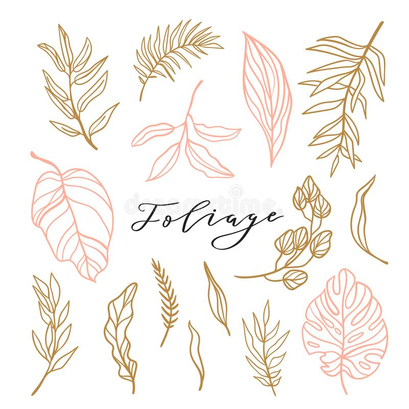 Elegancka kolekcja ulistnienie dla eleganckiego kobiecego loga lub ślubnego zaproszenia Ustaleni śliczni liście również zwrócić c ilustracji