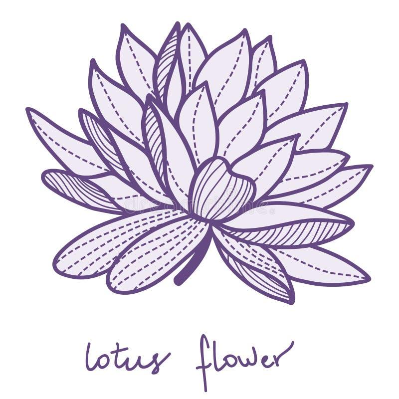 Elegancki lotosowy kwiat royalty ilustracja