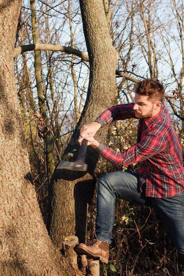 Elegancki lumberjack zdjęcie stock
