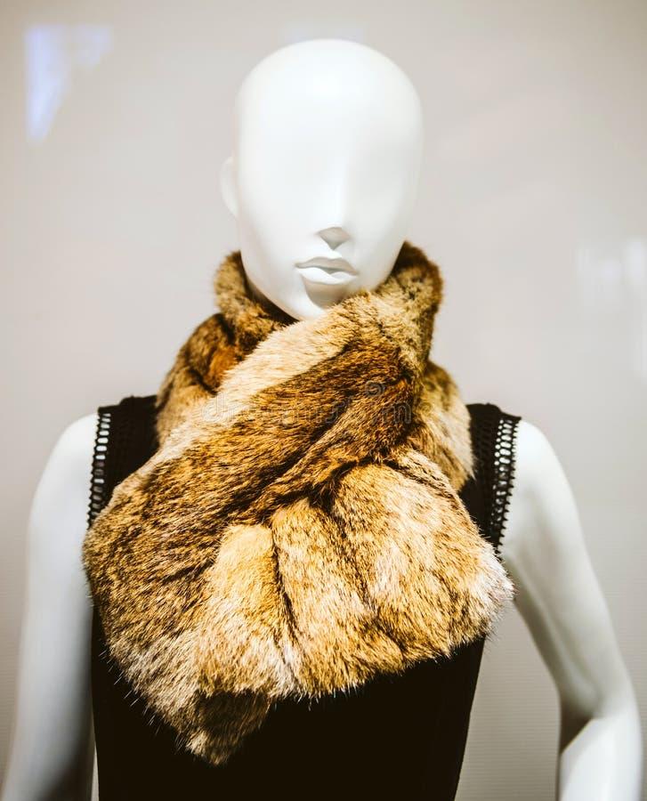 Elegancki mannequin dolly przedstawia odzieżowego szalika fotografia royalty free