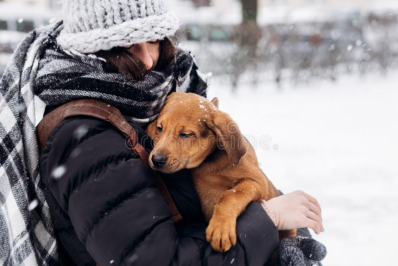 Elegancki modniś kobiety przytulenie i uśmiechnięty śliczny szczeniak w śnieżnym co fotografia stock