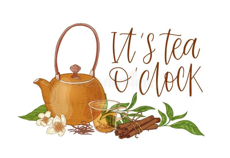 Elegancki skład z teapot, przejrzystą szklaną filiżanką z moczyć herbaty, świeżymi liśćmi, kwiatami, cynamonowymi kijami i Nim, ilustracja wektor