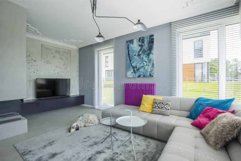 Elegancki szary przestronny żywy pokój fotografia royalty free