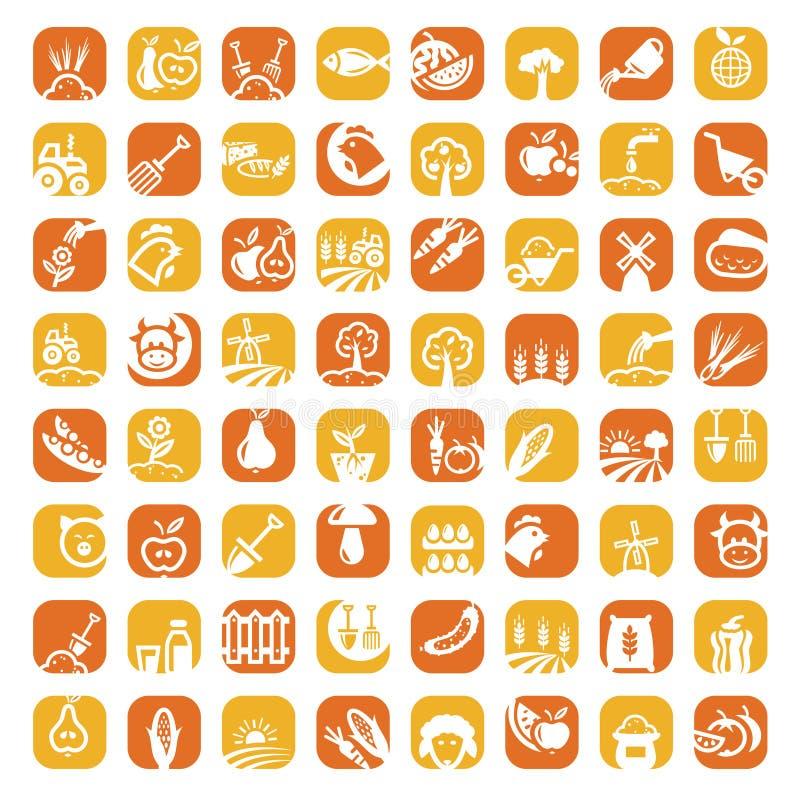 Duży koloru gospodarstwa rolnego ikony set ilustracji