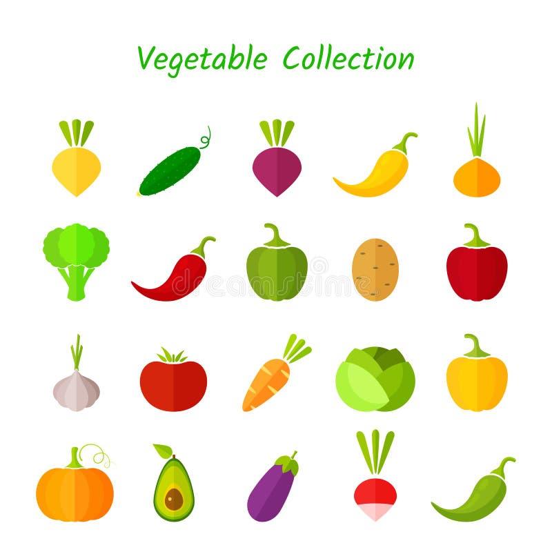 Eleganckiego projekta warzywa ikony odosobniony set ilustracji