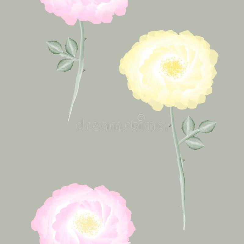 Eleganckiego rocznika bezszwowy kwiecisty wzór z wiosny oferty menchii i koloru żółtego psem wzrastał kwiaty i liście na lekkim b ilustracji