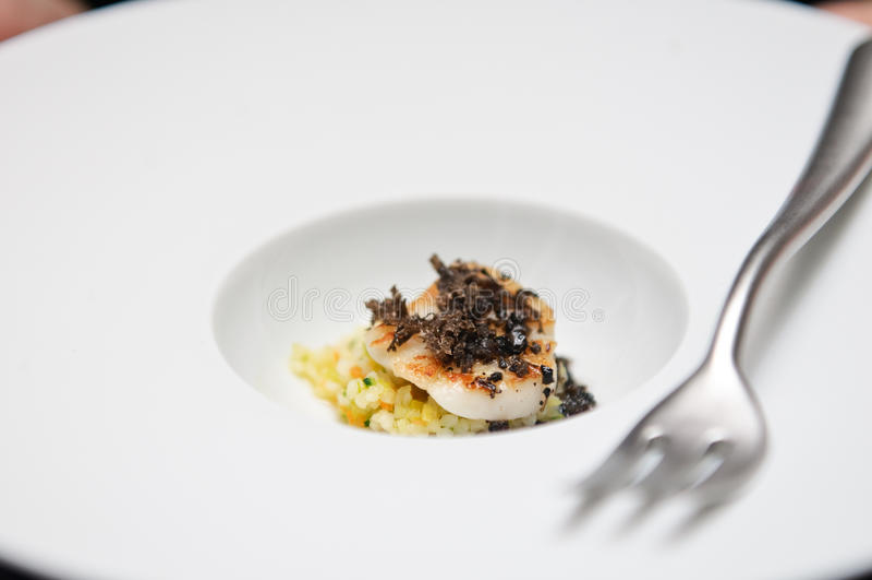 Download Elegant Appetizer With Saint Jaques Stock Image - Image: 23423397