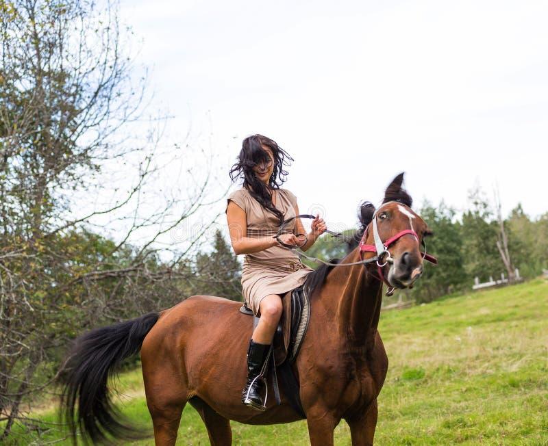 Elegant attraktiv kvinna som rider en hästäng royaltyfri foto