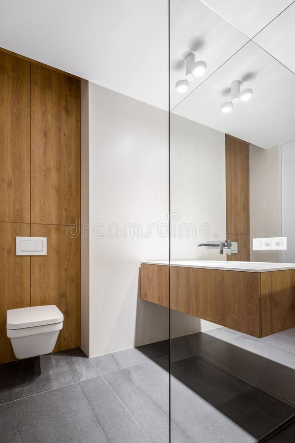 Elegant bathroom with cubic toilet royalty free stock photography