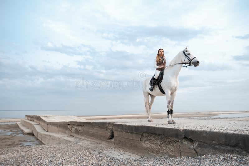 Elegant and beautiful confident young woman wearing stylish jockey outfit is holding reins and riding a white horse stock photo