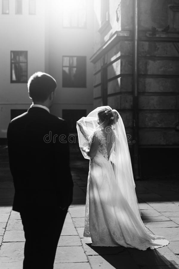 Gorgeous blonde bride posing in street under veil, sunlight playing with beautiful bride in white wedding dress, handsome groom w royalty free stock photos