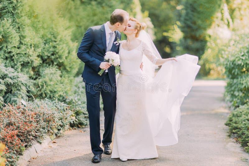 Elegant brud och brudgum som slappt utomhus kysser på en bröllopdag Den härliga våren parkerar bakgrund arkivfoton