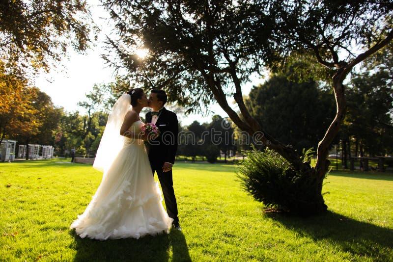 Elegant brud och brudgum som tillsammans utomhus poserar på en bröllopdag arkivbild