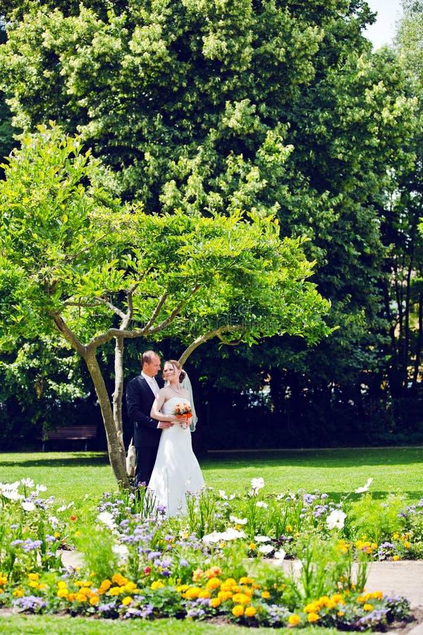 Elegant brud och brudgum som tillsammans utomhus poserar på en bröllopdag royaltyfri foto