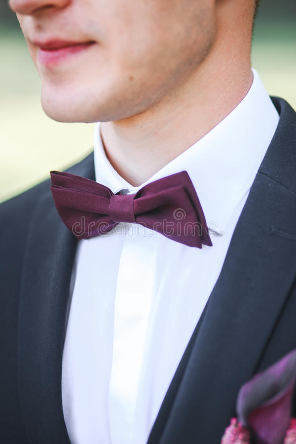 Elegant brudgum i svart den utomhus- dräkt och purpureflugan royaltyfria foton