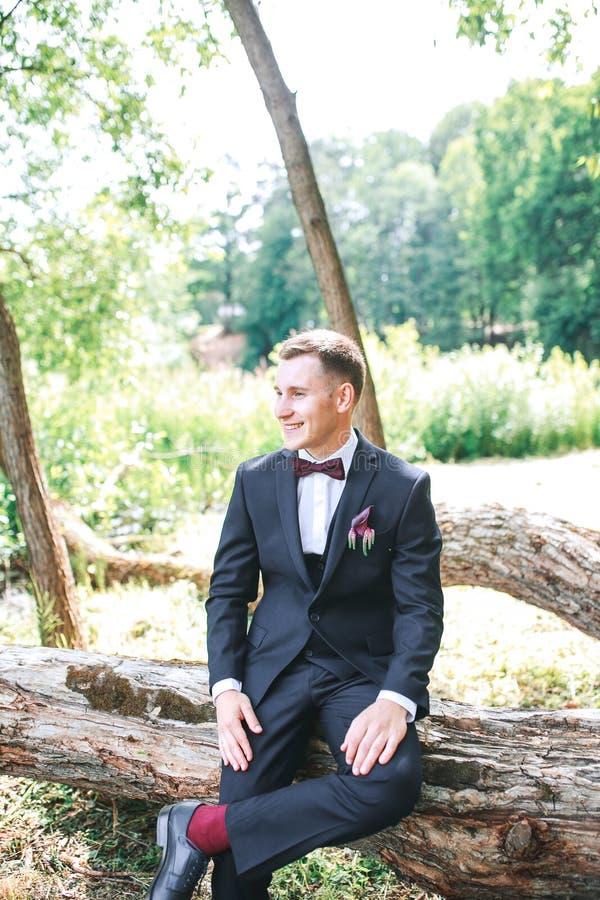 Elegant brudgum i svart den utomhus- dräkt och purpureflugan fotografering för bildbyråer