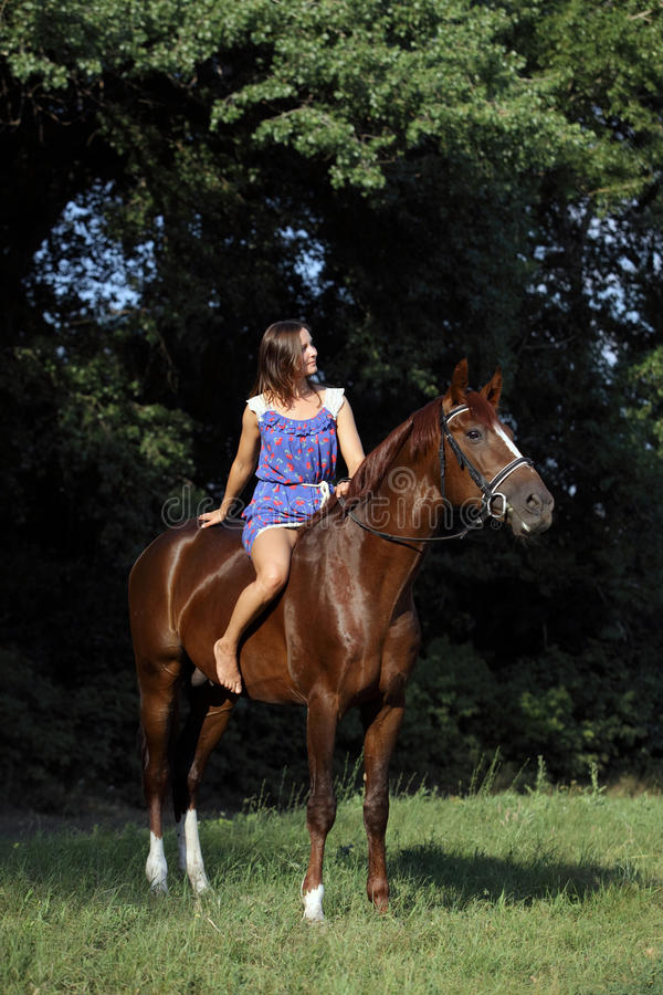 Free Elegant Equestrian Bareback Riding Horse Stock Photos - 55604373