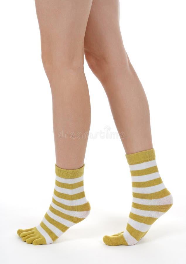 Elegant female legs in striped socks royalty free stock image