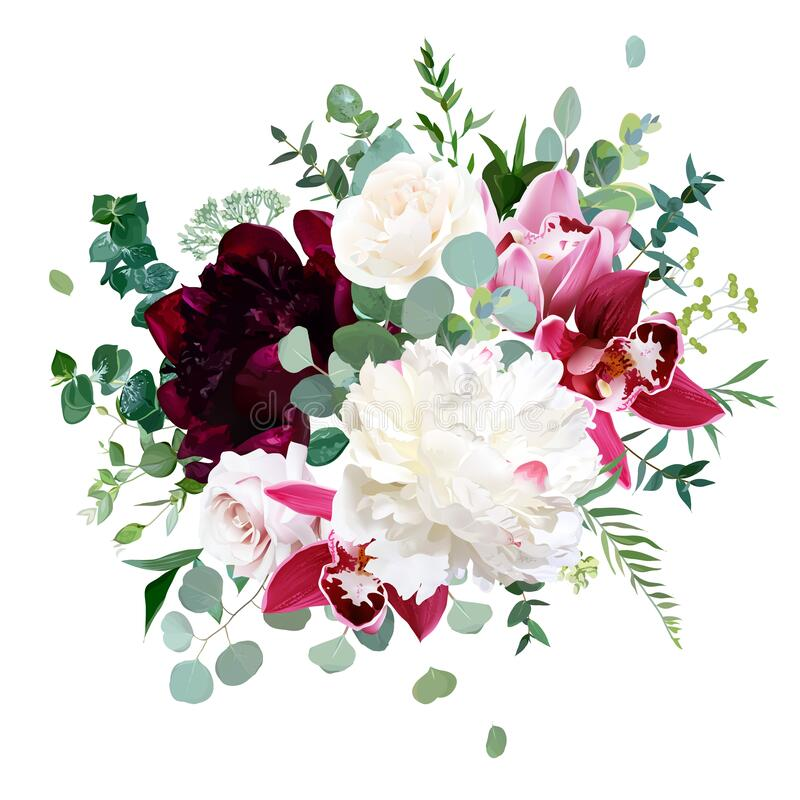 Free Elegant Floral Vector Bouquet With White And Burgundy Red Peony Royalty Free Stock Photo - 170362515