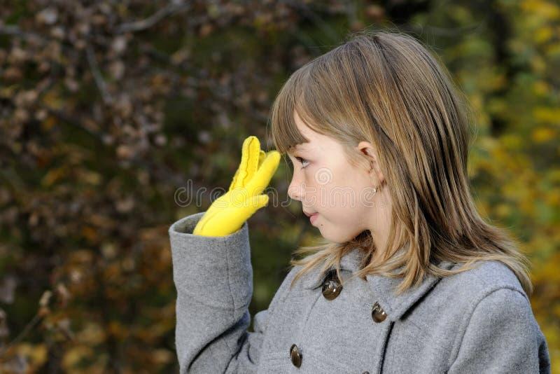 Elegant girl saluting in nature royalty free stock photos