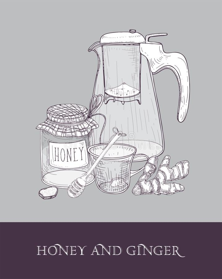 Elegant glass teapot or pitcher with strainer, cup of tea, jar of honey, ginger root and dipper hand drawn with contour stock illustration