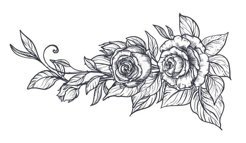 Elegant hand getrokken grafisch boeket met roze bloemen en bladeren royalty-vrije illustratie