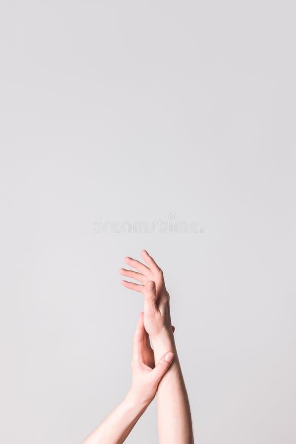 Elegant hands on neutral background. Elegant female hands on neutral background. Beauty and body care concepts stock image