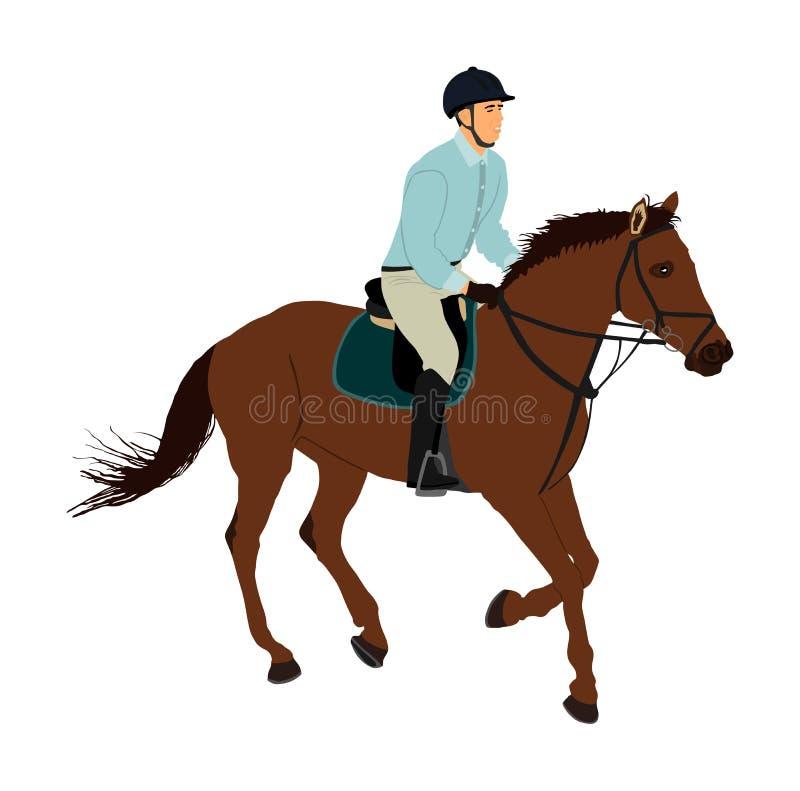 Elegant het rennen paard in galop vectorillustratie die op witte achtergrond wordt geïsoleerd Jockey het berijden paard in ras Re royalty-vrije illustratie