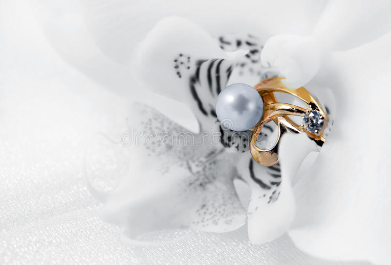 Download Elegant Jewelry Ring And Orchid Stock Photo - Image of grace, design: 22436244
