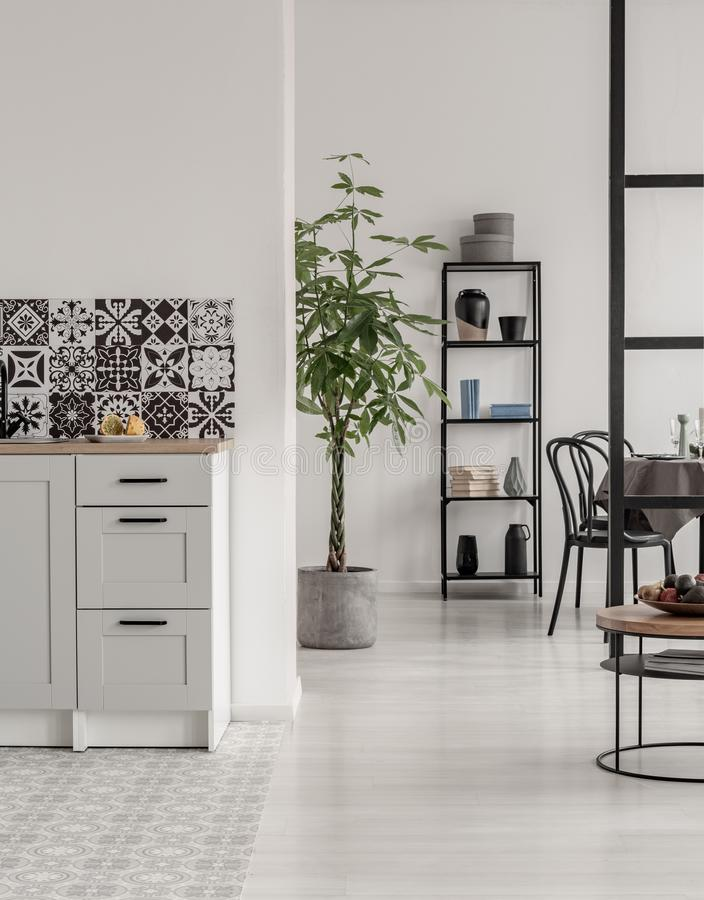 Elegant k?k- och matsalinre med svartvit design och v?xt i konkret kruka arkivfoto