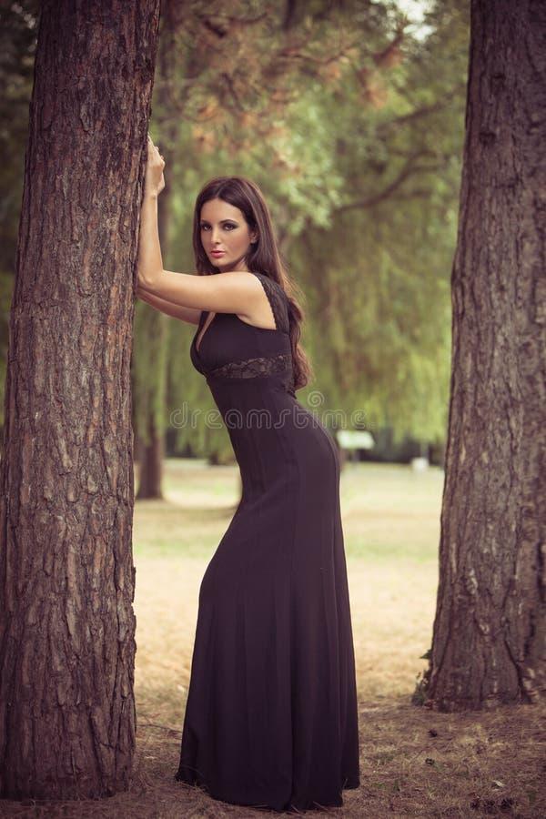 Elegant kvinna i trät royaltyfria foton