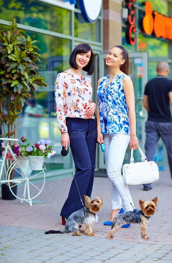 Elegant ladies walking the dogs on city street royalty free stock image