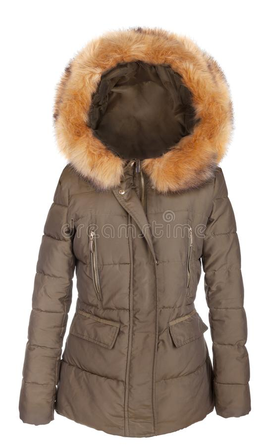 Elegant ladies winter jacket. Elegant designer fur lined ladies winter jacket, isolated on white royalty free stock photo