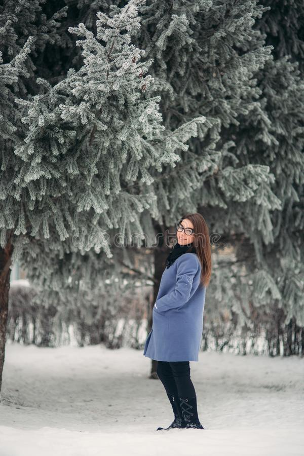 Elegant lady in blue coat stand near the Christmas tree. Happy New Year royalty free stock photos