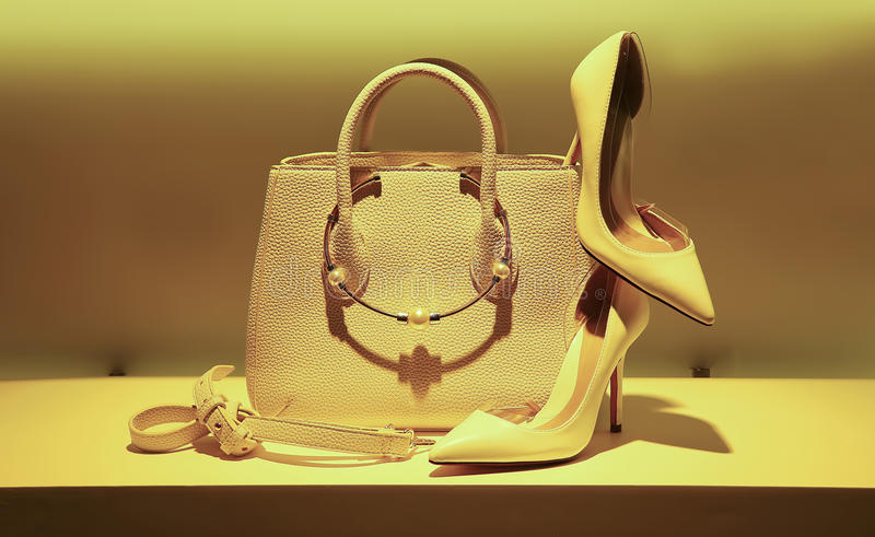 Elegant leather handbag and shoes stock images