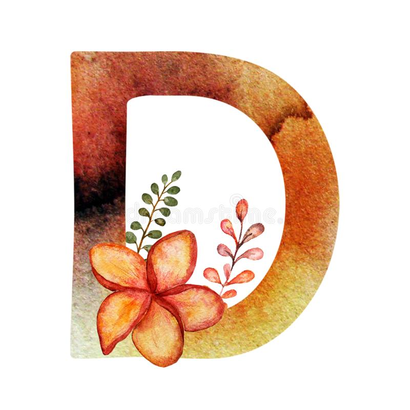 Elegant light colorful watercolor hand drawn ampersand alphabet. Letter D with hibiscus vector illustration
