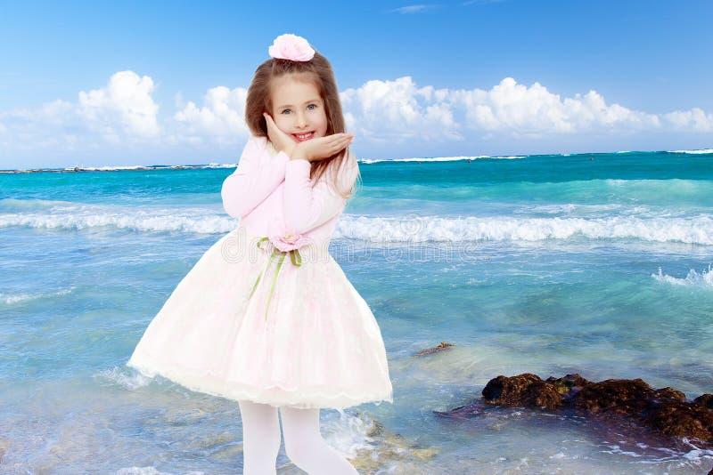 Elegant liten flicka i en rosa klänning royaltyfri bild