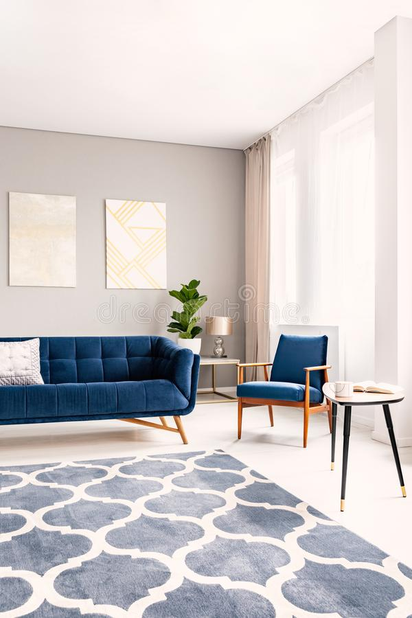 Elegant living room interior with a dark blue couch and a matching armchair. Large windows with drapes and a decorative rug. Real stock image