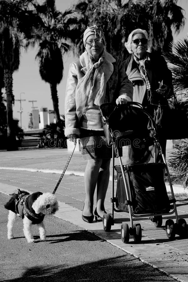 The elegant old woman. Two elegantly dressed ladies stroll with their dog to the city`s marina on a beautiful sunny day royalty free stock photo