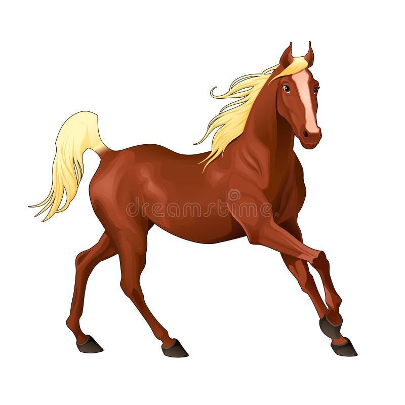 Elegant paard. royalty-vrije illustratie