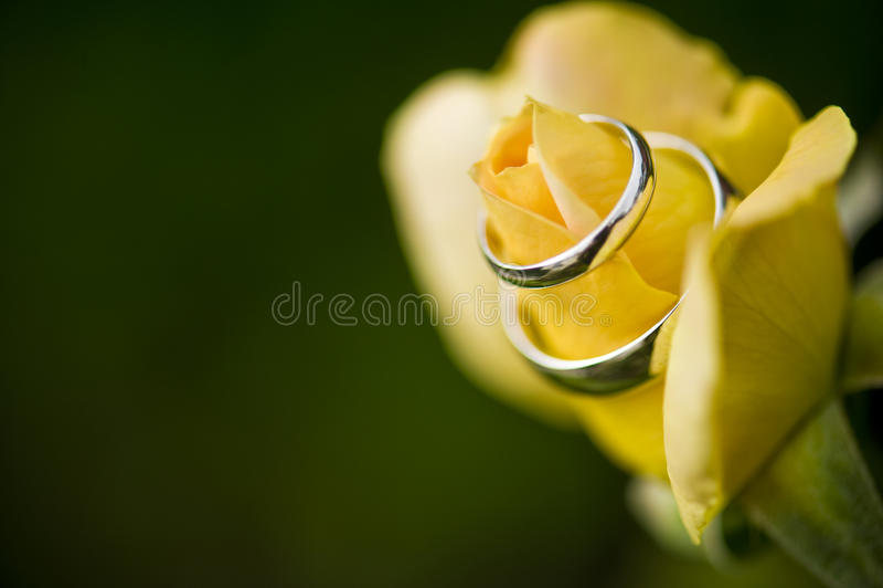 Download Elegant Promise stock image. Image of wedding, silver - 12664909