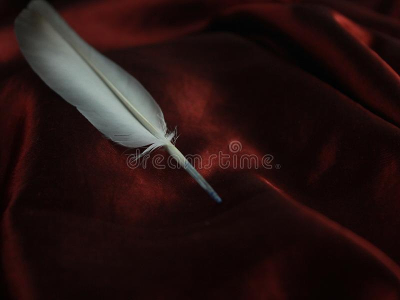 Elegant and rich red silk with feather. Calligraphy postcard greeting message arabian old heritage classic entertainment stock image
