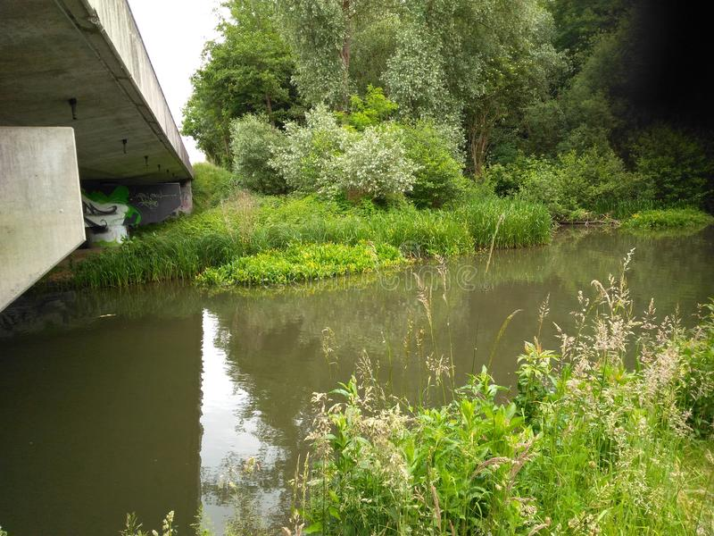 Elegant The river crosses a bridge. Elegant river crosses a bridge surrounded by reeds of grass plants and trees royalty free stock image